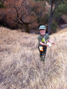 This isn't the first deer skull we've discovered on Mt. Diablo. We found another several years ago.