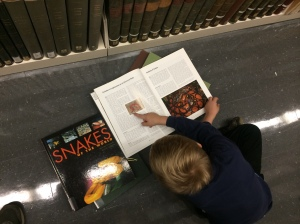 Snakes in the library!