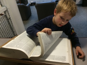 """Using the dictionary to look up """"beetle."""""""