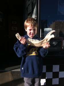 I bought him the mandible of a bison.