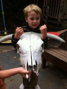 A big skull at a friend's house.