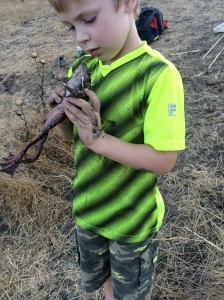 Kieran was thrilled to find a species we'd never encountered before.
