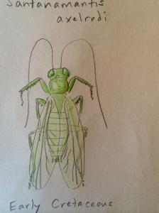 Cretaceous mantis