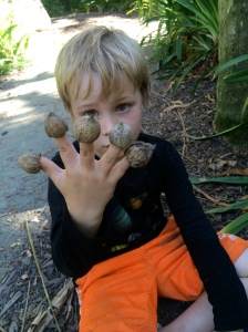 The nuts are perfect for finger puppets!
