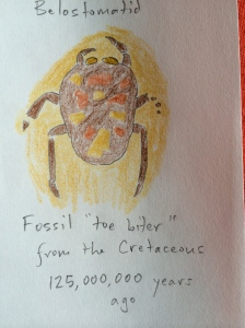 Fossil toe biter