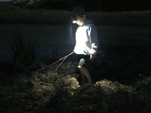 We often stay past dark to hunt for frogs with flashlights.