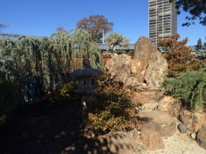 The bonsai garden is another treasure practically in the shadow of downtown buildings.