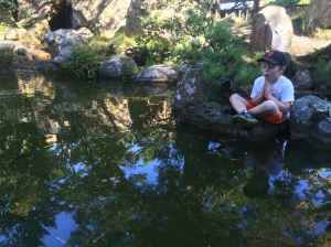 Kieran is also keen on meditating in the Japanese Garden.
