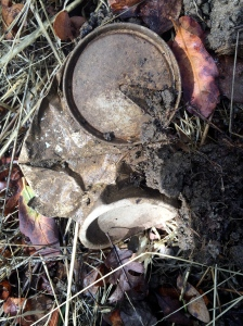 People have been partying up on Mt. Diablo for decades -- here's an ancient beer can with a pull tab.