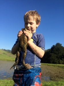 On our first day we caught the biggest bullfrog we've ever seen.
