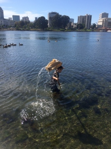 You never know what sort of wildlife you will encounter in Lake Merritt.